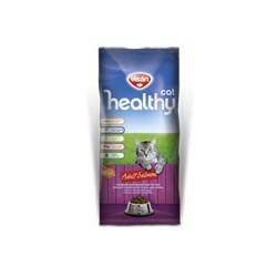 HEALTHY CAT SALMON